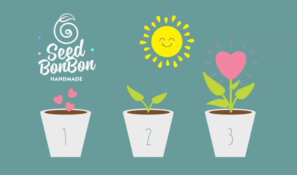 seed-bon-bonx2-1030x607-1-1030x607